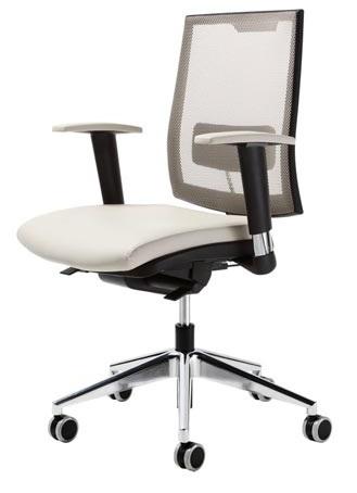 Sedia su rotelle con braccioli regolabili